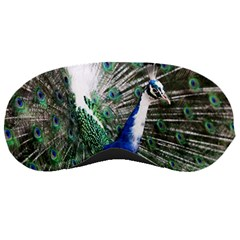 Animal Photography Peacock Bird Sleeping Masks
