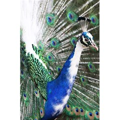 Animal Photography Peacock Bird 5 5  X 8 5  Notebooks