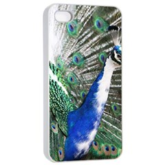Animal Photography Peacock Bird Apple Iphone 4/4s Seamless Case (white)