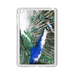Animal Photography Peacock Bird Ipad Mini 2 Enamel Coated Cases