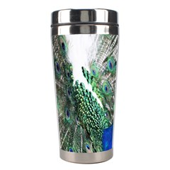 Animal Photography Peacock Bird Stainless Steel Travel Tumblers