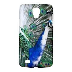 Animal Photography Peacock Bird Galaxy S4 Active