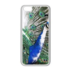Animal Photography Peacock Bird Apple Iphone 5c Seamless Case (white)
