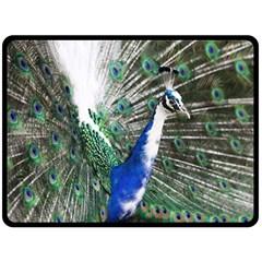 Animal Photography Peacock Bird Double Sided Fleece Blanket (large)