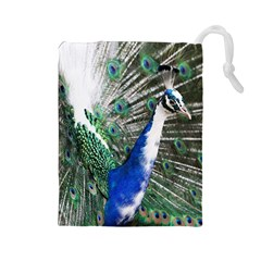 Animal Photography Peacock Bird Drawstring Pouches (large)