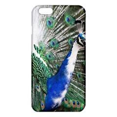 Animal Photography Peacock Bird Iphone 6 Plus/6s Plus Tpu Case