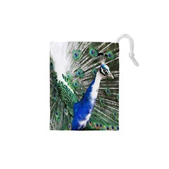 Animal Photography Peacock Bird Drawstring Pouches (xs)