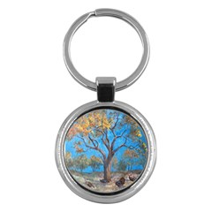 Turkeys Key Chains (round)