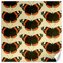 Butterfly Butterflies Insects Canvas 20  X 20