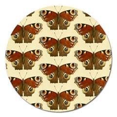 Butterfly Butterflies Insects Magnet 5  (round)