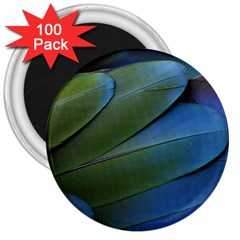 Feather Parrot Colorful Metalic 3  Magnets (100 Pack)