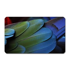 Feather Parrot Colorful Metalic Magnet (Rectangular)