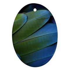 Feather Parrot Colorful Metalic Oval Ornament (two Sides)