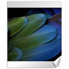 Feather Parrot Colorful Metalic Canvas 16  X 20