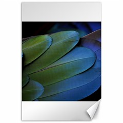 Feather Parrot Colorful Metalic Canvas 24  X 36