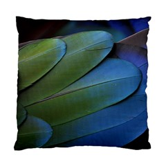 Feather Parrot Colorful Metalic Standard Cushion Case (two Sides)