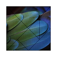 Feather Parrot Colorful Metalic Acrylic Tangram Puzzle (6  X 6 )