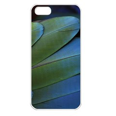Feather Parrot Colorful Metalic Apple Iphone 5 Seamless Case (white)