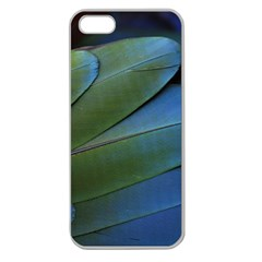 Feather Parrot Colorful Metalic Apple Seamless Iphone 5 Case (clear)