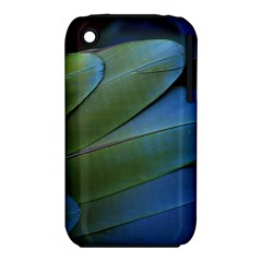 Feather Parrot Colorful Metalic Iphone 3s/3gs