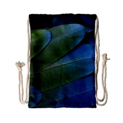 Feather Parrot Colorful Metalic Drawstring Bag (small)