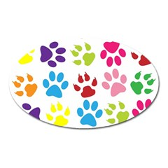 Paw Print Paw Prints Background Oval Magnet