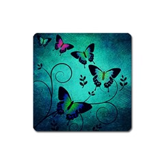 Texture Butterflies Background Square Magnet