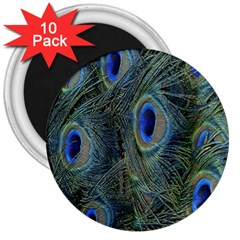 Peacock Feathers Blue Bird Nature 3  Magnets (10 pack)
