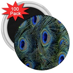 Peacock Feathers Blue Bird Nature 3  Magnets (100 Pack)