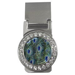 Peacock Feathers Blue Bird Nature Money Clips (cz)