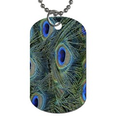 Peacock Feathers Blue Bird Nature Dog Tag (two Sides)