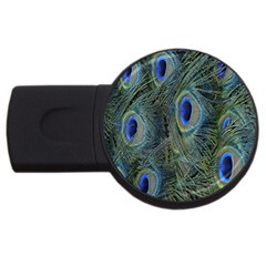 Peacock Feathers Blue Bird Nature Usb Flash Drive Round (2 Gb)