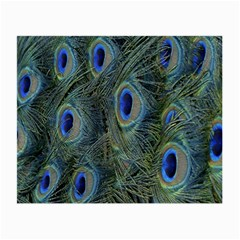 Peacock Feathers Blue Bird Nature Small Glasses Cloth