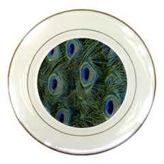 Peacock Feathers Blue Bird Nature Porcelain Plates