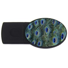 Peacock Feathers Blue Bird Nature Usb Flash Drive Oval (4 Gb)