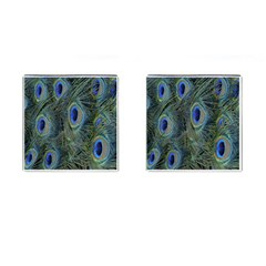 Peacock Feathers Blue Bird Nature Cufflinks (square)