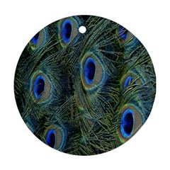 Peacock Feathers Blue Bird Nature Round Ornament (two Sides)