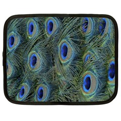 Peacock Feathers Blue Bird Nature Netbook Case (xl)