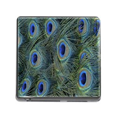 Peacock Feathers Blue Bird Nature Memory Card Reader (square)