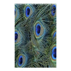 Peacock Feathers Blue Bird Nature Shower Curtain 48  X 72  (small)