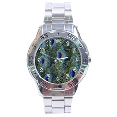 Peacock Feathers Blue Bird Nature Stainless Steel Analogue Watch