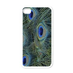Peacock Feathers Blue Bird Nature Apple Iphone 4 Case (white)