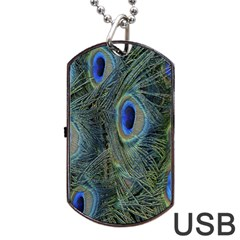 Peacock Feathers Blue Bird Nature Dog Tag Usb Flash (two Sides)