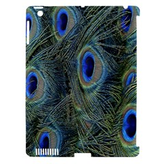 Peacock Feathers Blue Bird Nature Apple Ipad 3/4 Hardshell Case (compatible With Smart Cover)