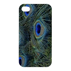 Peacock Feathers Blue Bird Nature Apple Iphone 4/4s Premium Hardshell Case