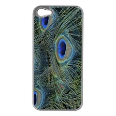 Peacock Feathers Blue Bird Nature Apple Iphone 5 Case (silver)