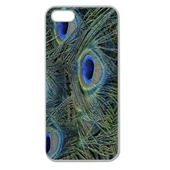 Peacock Feathers Blue Bird Nature Apple Seamless Iphone 5 Case (clear)