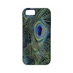 Peacock Feathers Blue Bird Nature Apple Iphone 5 Classic Hardshell Case (pc+silicone)