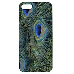 Peacock Feathers Blue Bird Nature Apple Iphone 5 Hardshell Case With Stand