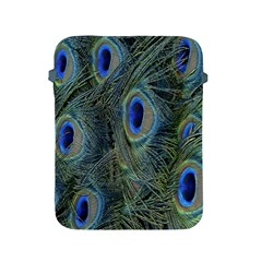 Peacock Feathers Blue Bird Nature Apple Ipad 2/3/4 Protective Soft Cases